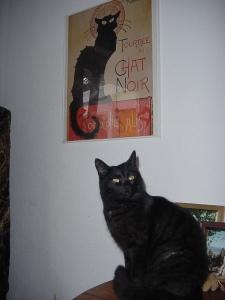 Cleo et le Chat Noir